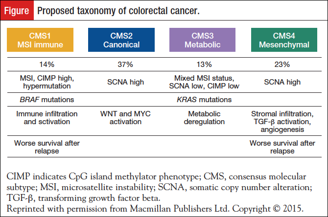 Personalized Care In Colorectal Cancer Tailoring Treatment And Healthcare Delivery Personalized Medicine In Oncology